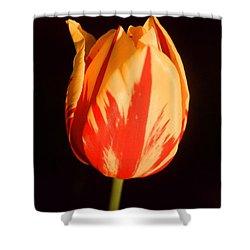 Strength Of A Flower Shower Curtain by Jonathan Michael Bowman