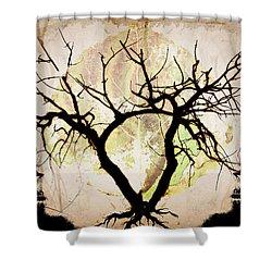 Stretching Shower Curtain by Brett Pfister