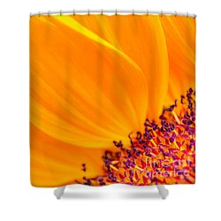 Shower Curtain featuring the photograph Stretching Out by Jim Carrell