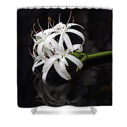 Shower Curtain featuring the photograph String Lily #1 by Paul Rebmann
