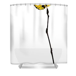 String Theory 2 - Featured 3 Shower Curtain