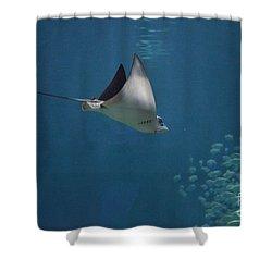 Stringray Heading Towards Fish Shower Curtain by DejaVu Designs