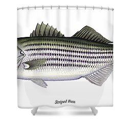 Striped Bass Shower Curtain