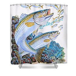 Striped Bass Rocks Shower Curtain by Carey Chen