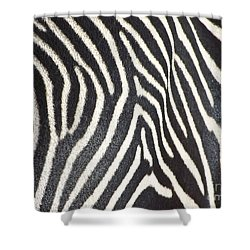 Stripes And Ripples Shower Curtain