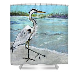 Shower Curtain featuring the pastel Strolling Along by Rosemary Aubut