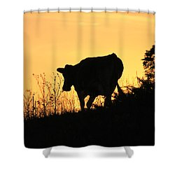 Shower Curtain featuring the photograph Strolling Into The Sunset by Penny Meyers
