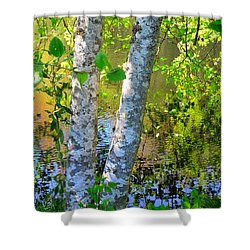 Strolling With Renoir Shower Curtain by Lauren Leigh Hunter Fine Art Photography