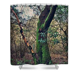 Strong Enough To Hold You Shower Curtain by Laurie Search