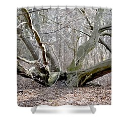 Struck By Lightning - Grafical Shower Curtain by Tine Nordbred