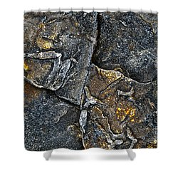Structural Stone Surface Shower Curtain by Heiko Koehrer-Wagner