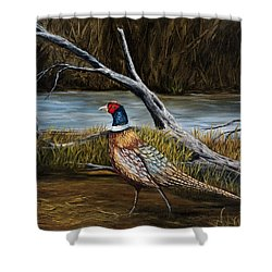 Strutting Pheasant Shower Curtain