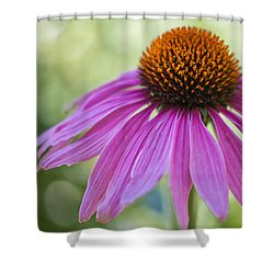 Stunning Beauty Shower Curtain by Heidi Smith