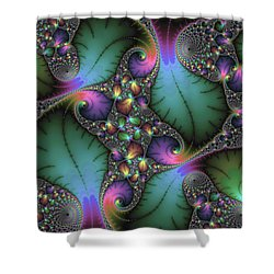 Stunning Mandelbrot Fractal Shower Curtain