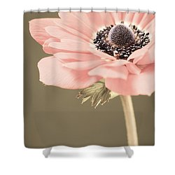 Subdued Anemone Shower Curtain