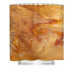 Success And Failure Shower Curtain by Fran Riley