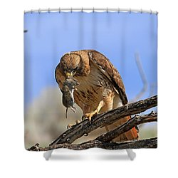 Successful Hunt Shower Curtain by Donna Kennedy
