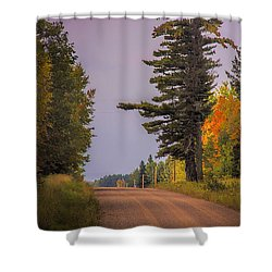 Sudden Light Shower Curtain by Susan Crossman Buscho