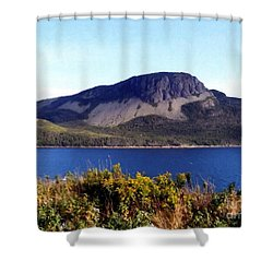 Shower Curtain featuring the painting Sugarloaf Hill In Summer by Barbara Griffin