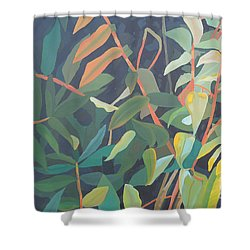 Sumac Shower Curtain