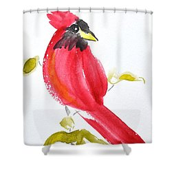 Shower Curtain featuring the painting Sumi-e Cardinal II by Beverley Harper Tinsley