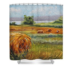 Summer Bales Shower Curtain by Meaghan Troup