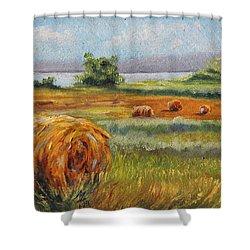 Summer Bales Shower Curtain