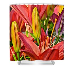 Summer Bouquet Shower Curtain by Frozen in Time Fine Art Photography