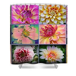 Summer Time Dahlias Shower Curtain