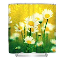 Summer Daisy Shower Curtain