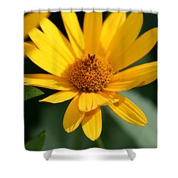 Shower Curtain featuring the photograph Summer Dance by Denyse Duhaime