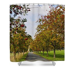 Summer Day In The Country Shower Curtain by Aged Pixel