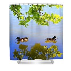 Summer Day On The Lake Shower Curtain by Mariola Bitner