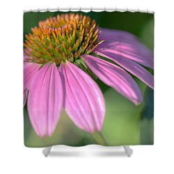 Summer Days End Shower Curtain by Heidi Smith