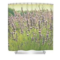 Summer Dreams Shower Curtain by Lynn Sprowl