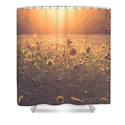 Summer Evening Shower Curtain by Chris Fletcher