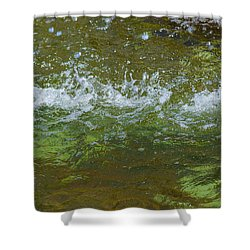 Summer Freshness - Featured 3 Shower Curtain by Alexander Senin
