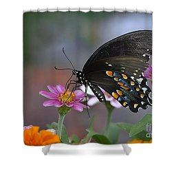 Shower Curtain featuring the photograph Summer Garden by Nava Thompson