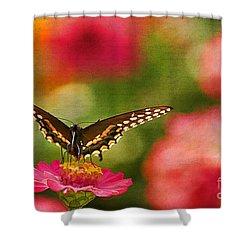 Summer Grace Shower Curtain by Darren Fisher