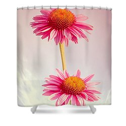Summer Impressions Cone Flowers Shower Curtain by Bob Orsillo