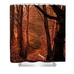 Summer In Sots Hole Shower Curtain by Baggieoldboy