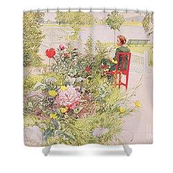 Summer In Sundborn Shower Curtain by Carl Larsson