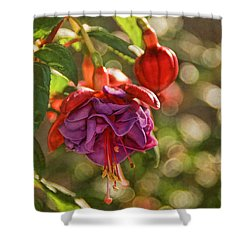 Shower Curtain featuring the photograph Summer Jewels by Peggy Hughes
