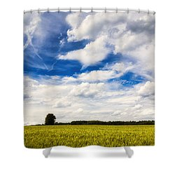 Summer Landscape With Cornfield Blue Sky And Clouds On A Warm Summer Day Shower Curtain by Matthias Hauser