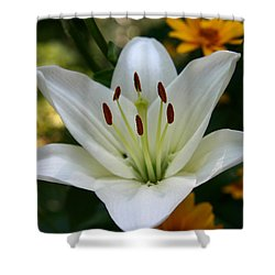 Shower Curtain featuring the photograph Summer Lily by Denyse Duhaime