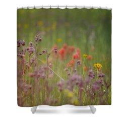 Shower Curtain featuring the photograph Summer Meadow by Ellen Heaverlo