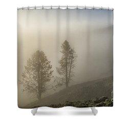 Summer Morning In Yellowstone Shower Curtain by Sandra Bronstein