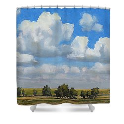 Summer Pasture Shower Curtain by Bruce Morrison