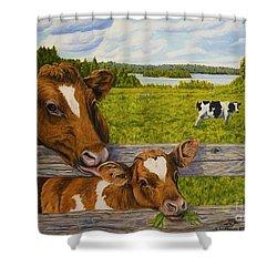 Summer Pasture Shower Curtain by Veikko Suikkanen