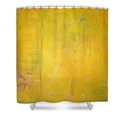Summer Rain C2011 Shower Curtain